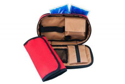 Органайзер с 2 отделениями на молнии, 2 гель-пакетами и дополнительным чехлом, diabet-aksessuar